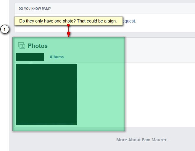 Number of Facebook Photos in a Fake Account