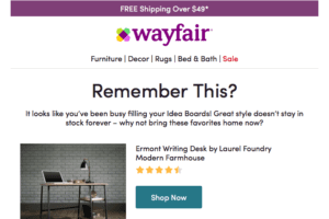Targeted Email Marketing: Wayfair