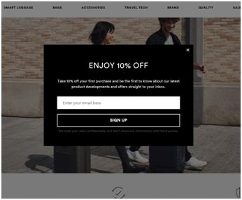 Horizn-studios.com: Email Capture Pop-Up Example